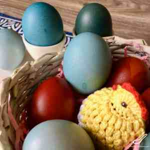 It's Easy Dying Eggs with Red Cabbage - making beautiful blue Easter eggs, naturally dyed without harsh chemicals. No need for a Easter egg dye kit!