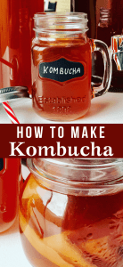 How to make Kombucha, a recipe that's easy to make, sweet and tangy, full of nutrients, health benefits and probiotics. Mushroom Tea Kombucha Recipe (Чайный гриб)