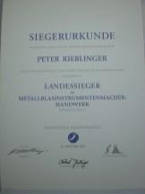 Auszeichnungen3