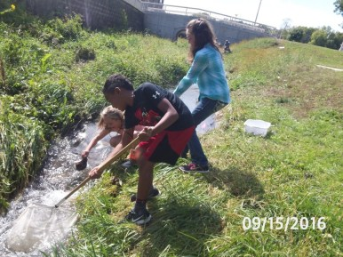 A group examines a fast running part of the creek.