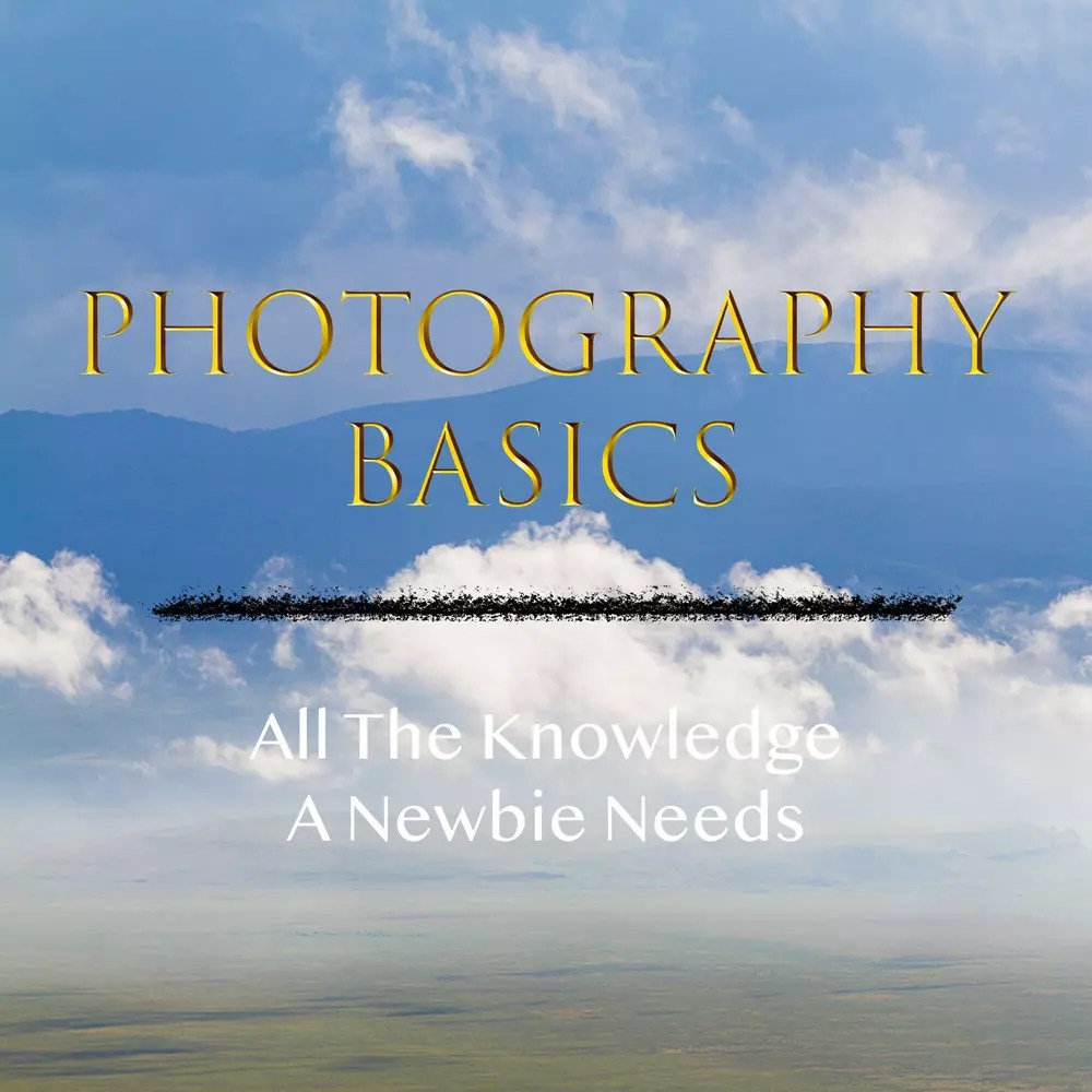 Photography Basics - How Your Camera Works