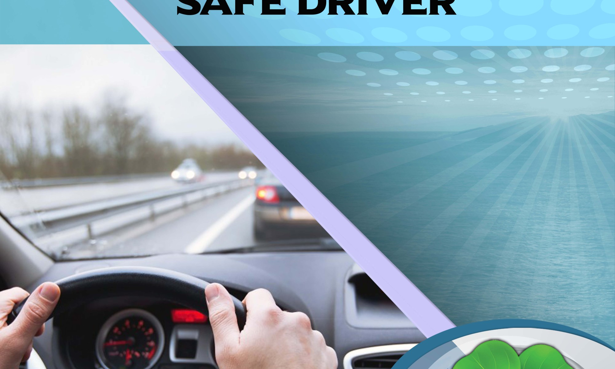 WELCOME SAFE DRIVER