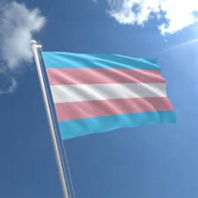 Welcome Acceptance of Transgender flag. min