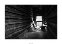 Nikon D90_28872__DSC0139-border