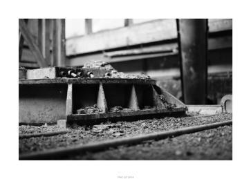 Nikon D90_28922__DSC0189-border