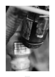Nikon D90_28951__DSC0218-border