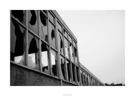 Nikon D90_29033__DSC0308-border