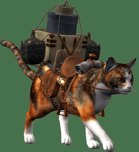 Pet Evac Pak Travel Kits for Pets