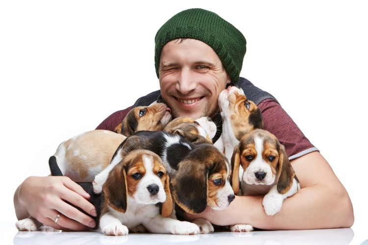 5 Businesses You Can Start in the Booming Pet Industry