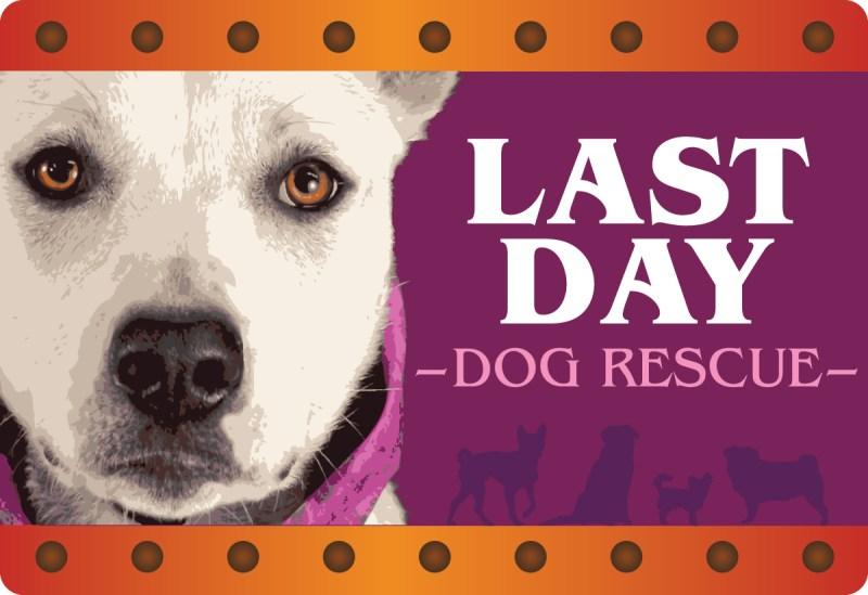 Last Day Dog Rescue
