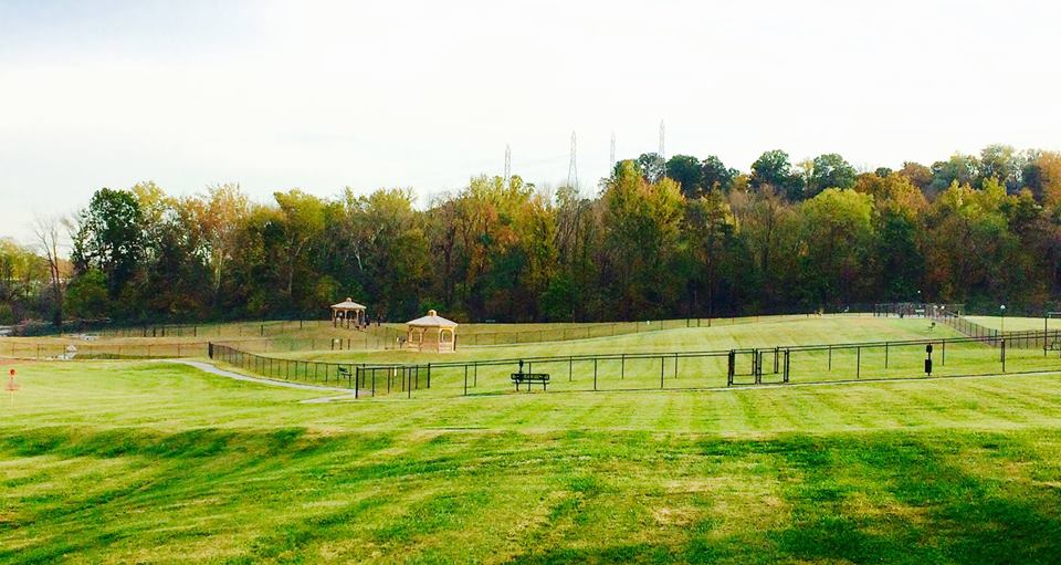 New Albany Dog Park