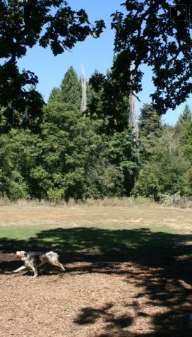 North Clackamas Park