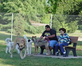 Todd Beamer Dog Park