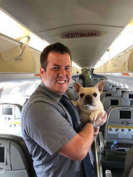 7dd7c12067f Awww!, Dog News, dogs on planes, Facebook, Featured, French bulldogs,  Frenchies, Happy Ending, happy ending airline story, Heroic Humans,  in-flight dog ...