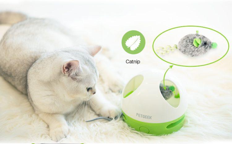 catnip kattenspeelgoed