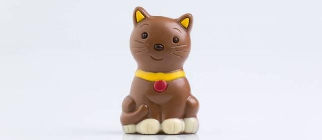 mačka-od-čokolade