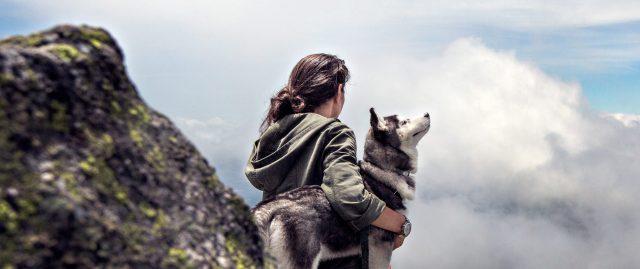 psi-i-zdravlje