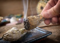 is burning sage toxic to dogs