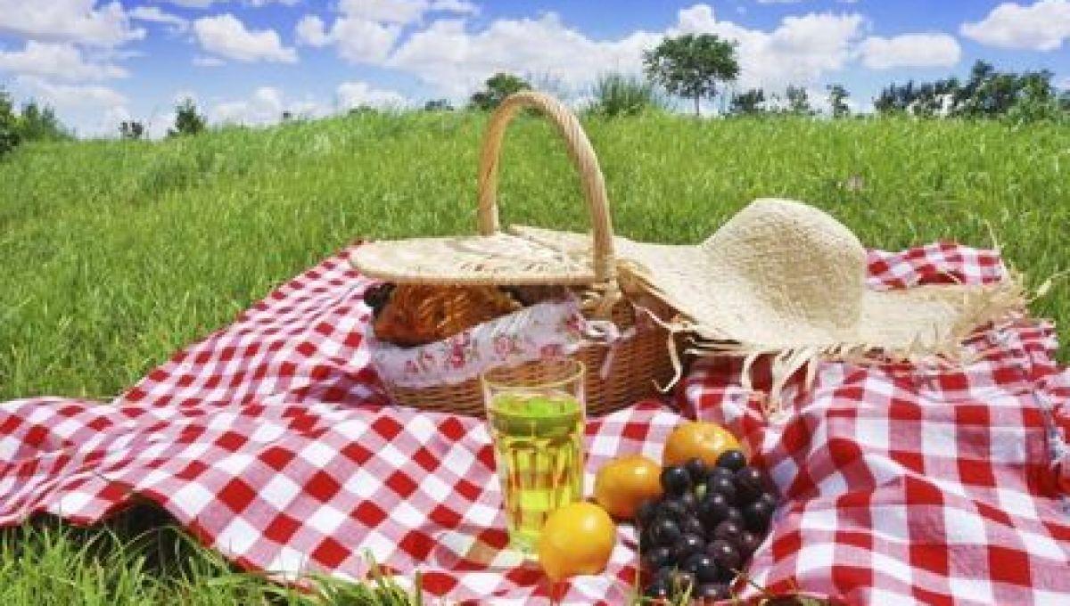 picknick_0
