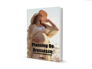 planning de grossesse