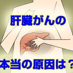 kanzou_gan