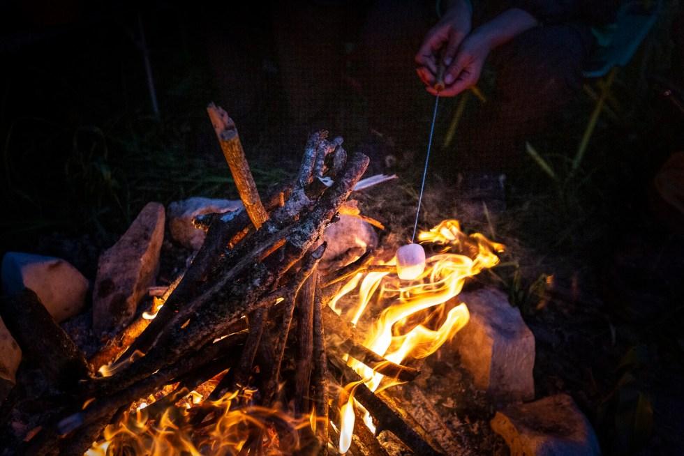 Chamallow grillés au feu de bois