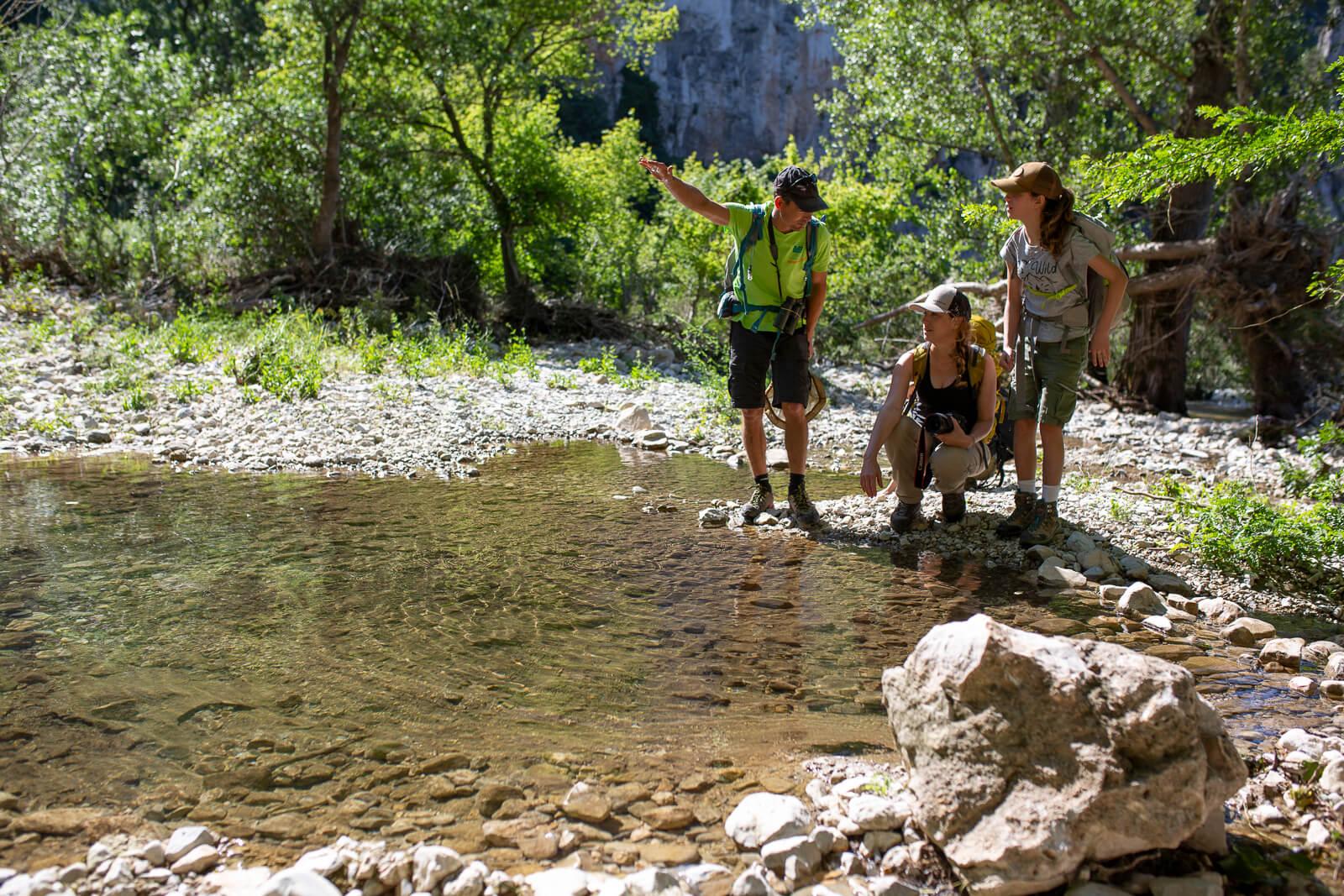 Guide de la Réserve Naturelle des Gorges de l'Ardèche