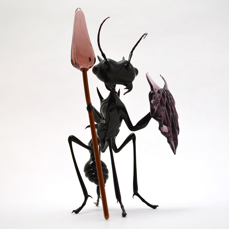 Ants Permis De Conduire