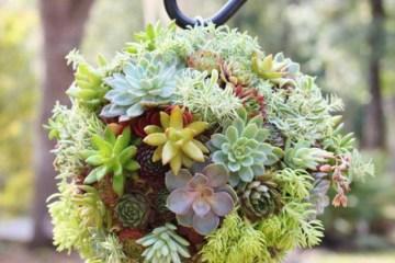 déco pour jardin pour extérieur