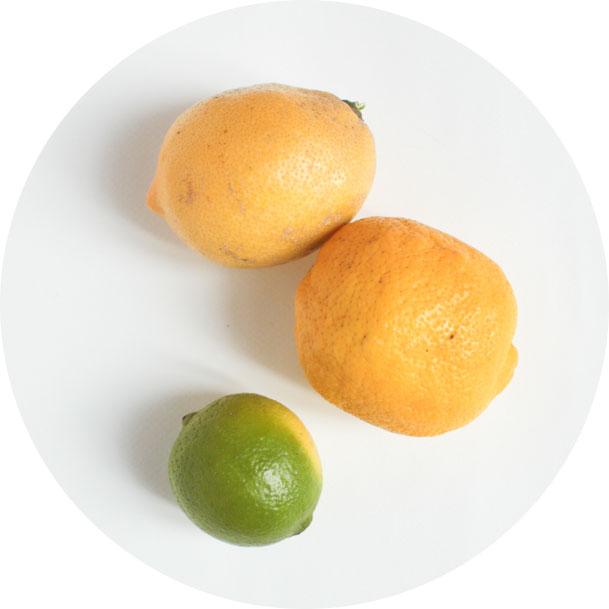 citron-bio-nouveaux-robinsons