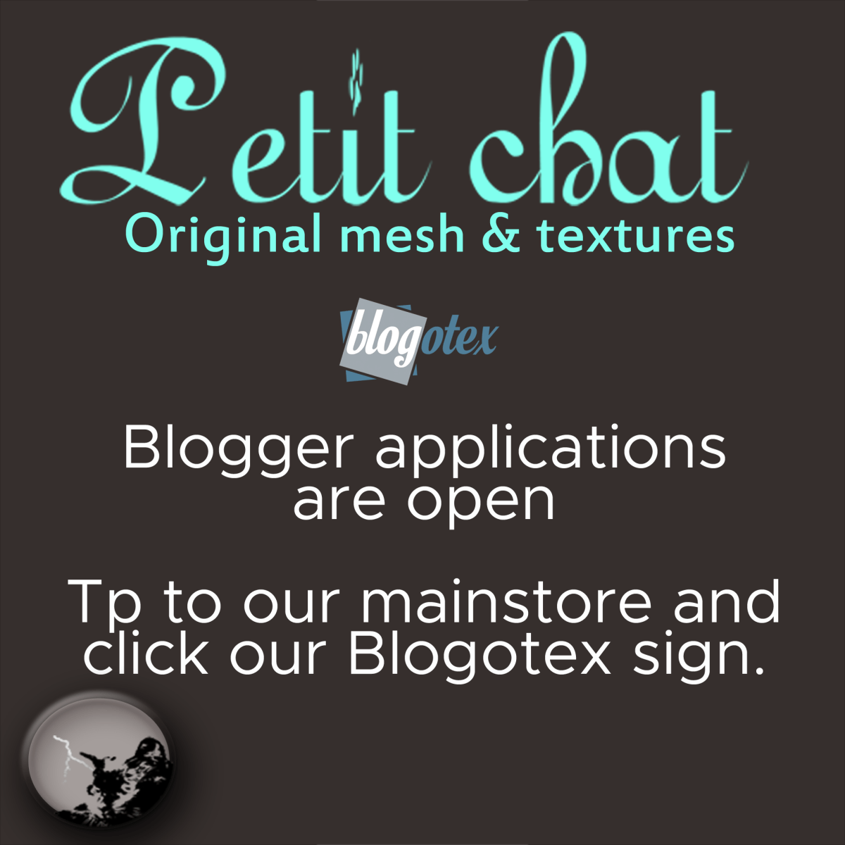 Petit Chat blogger team is recruiting again !
