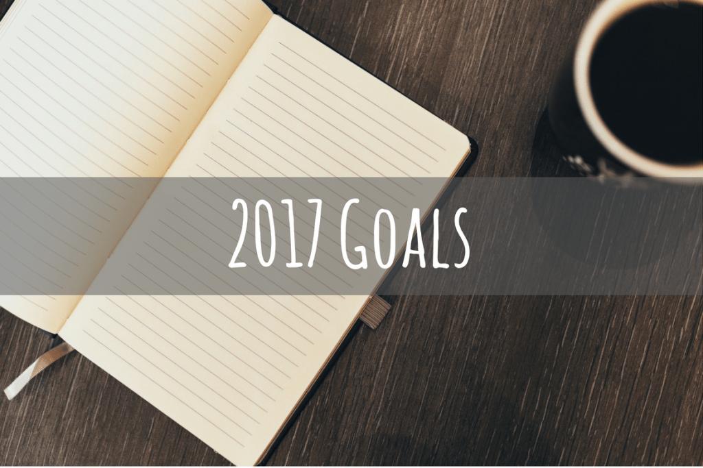 2017 Goals - Petite Dreamers