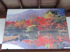 20161129 Arashiyama 27