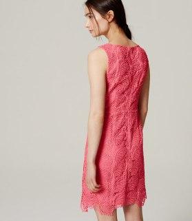 loft dress 3