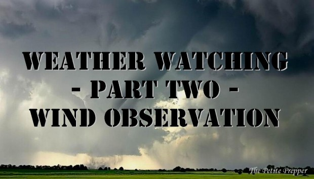 Weather Watching Header 2