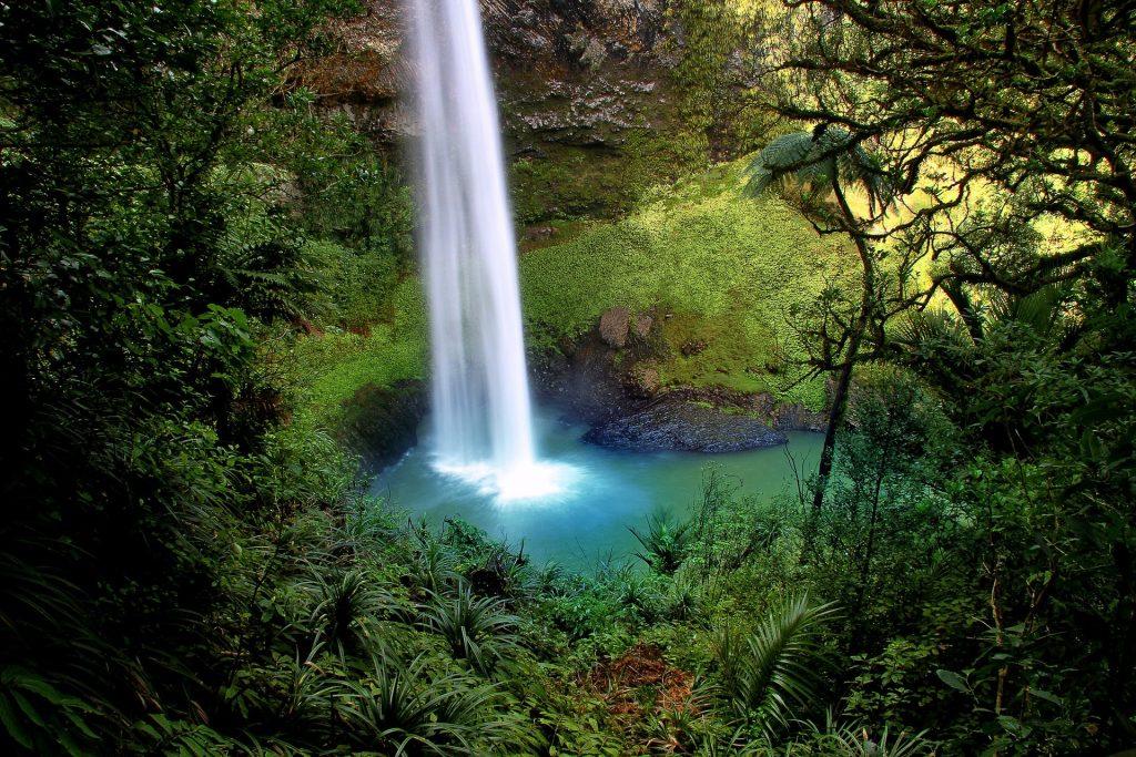 chute d'eau île du nord en nouvelle-zélande