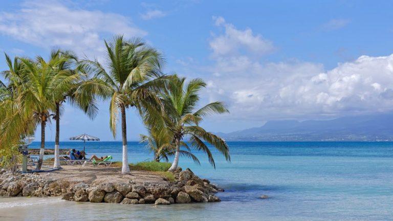 palmiers et plage avec eau turquoise pour passer l'hiver au soleil