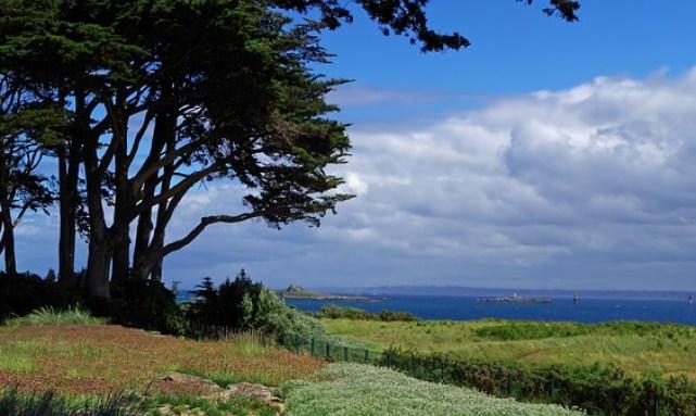 maquis et mer sur l'île de Batz qui est l'une des plus belles îles françaises