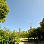 風のハミング2017の感想(大阪靭公園)◆ゲスト:押尾コータローさんと平井堅さん