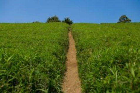 セミリタイアへの道を目指す