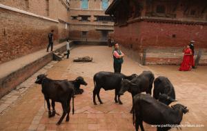 Bhaktapur avec enfants - Petits Globetrotteurs