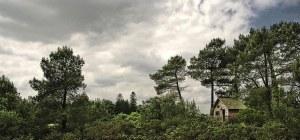 Cabane dans les arbres hébergement insolite dans le Morbihan