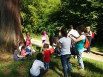 Activités en forêt, photo de Réseau des médiathèques de Clamart (CC BY 2.0)