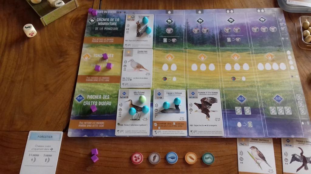 Cartes de jeu sur les oiseaux