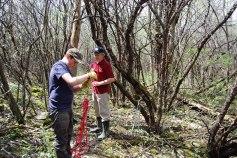 petkid-walk-in-the-woods_DSC_0935