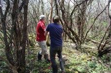 petkid-walk-in-the-woods_DSC_0958
