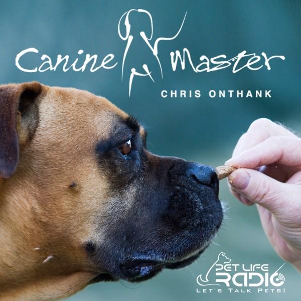 Canine Master - Dog training and behavior on Pet Life ...