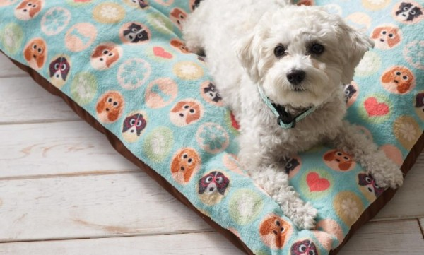 Modern Pattern Pet Beds for dogs and cats