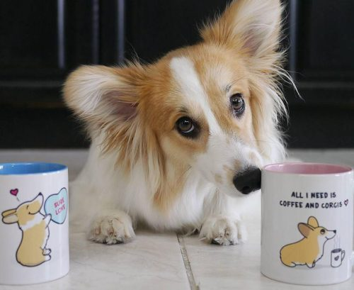 The Best Corgi Mugs by Give A Fluff