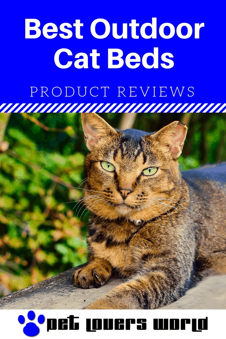 Best Cat Beds For Outside Reviews Pinterest Image